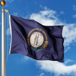 Kentucky Polyester Outdoor Flags