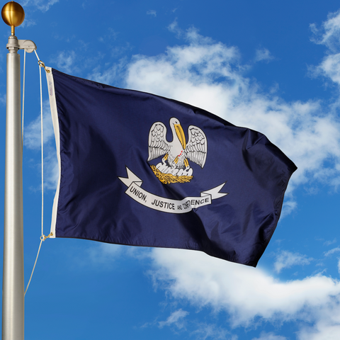 Louisiana Polyester Outdoor Flags