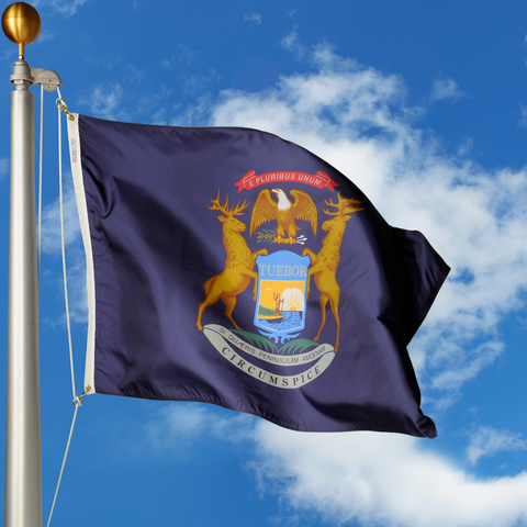 Michigan Polyester Outdoor Flags