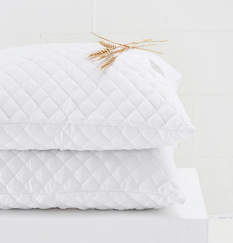 Guest Fresh Quilted Pillow Protector