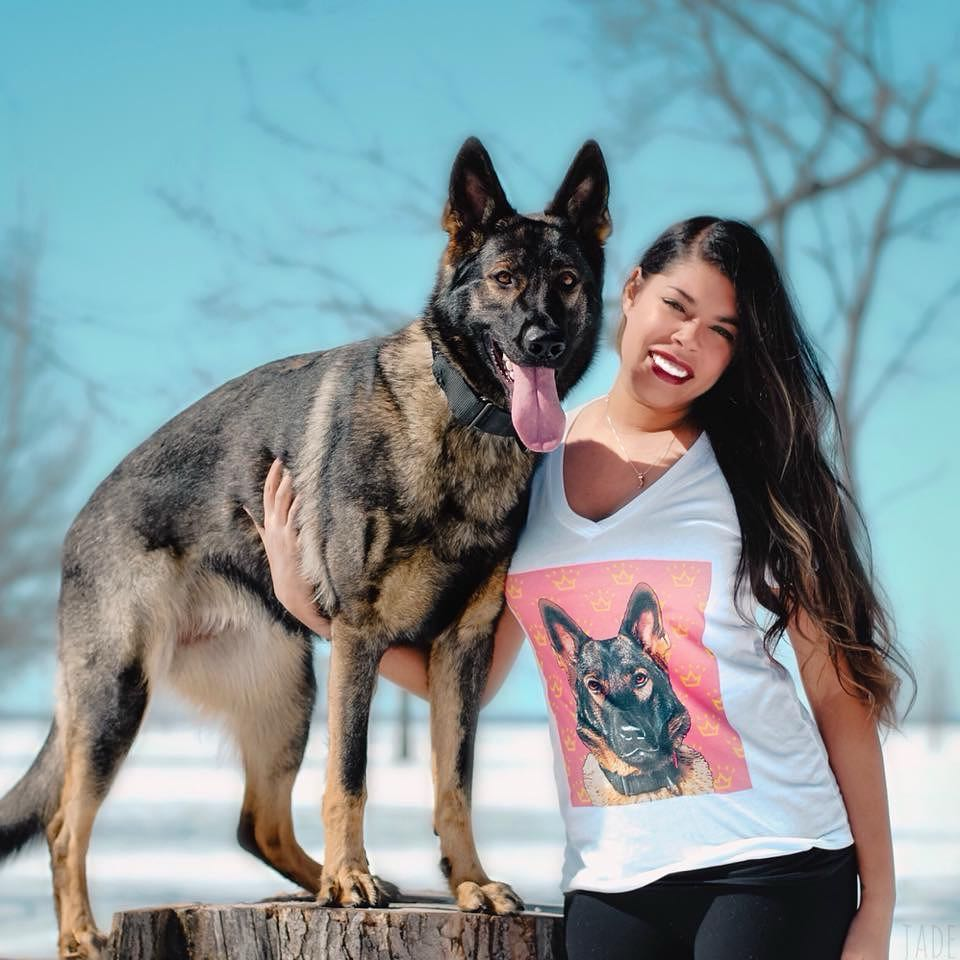 10 Reasons Why We Love Jade The Sable German Shepherd Dog