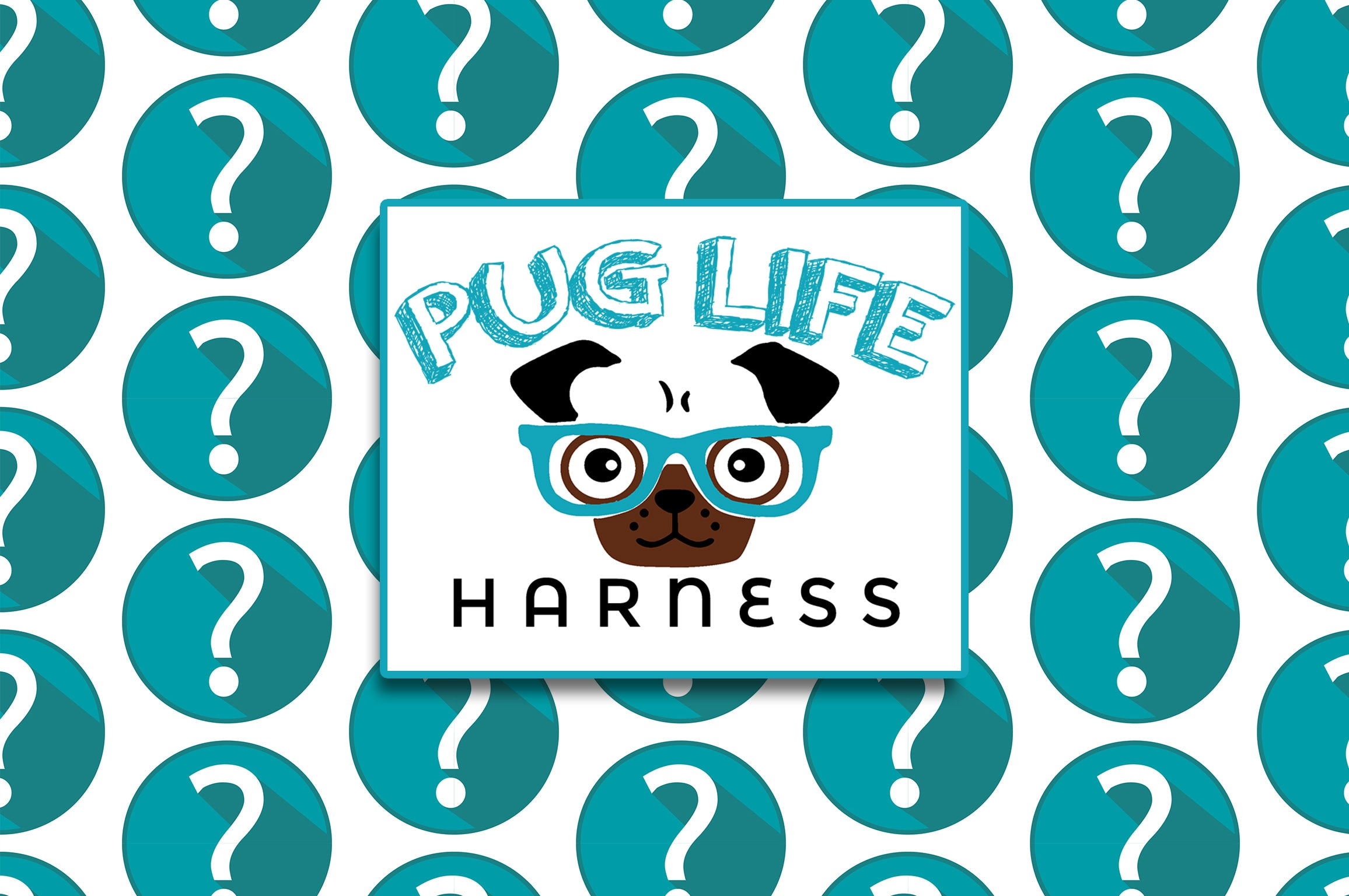 Pug Life Harness: Is it available on Amazon?