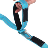 2 in 1: Dog Leash/Seatbelt Combo