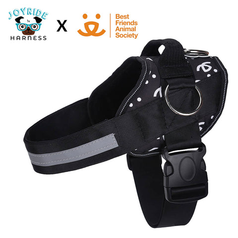 Best Friends Animal Society SPECIAL EDITION Harness