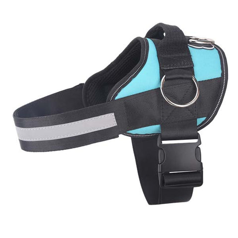 Teal Dog Harness