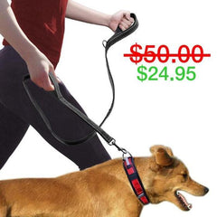 Double Handle Heavy Duty Dog Leash