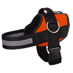 NEW All-In-One™ No Pull Dog Harness orange