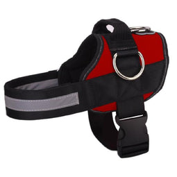NEW All-In-One™ No Pull Dog Harness red