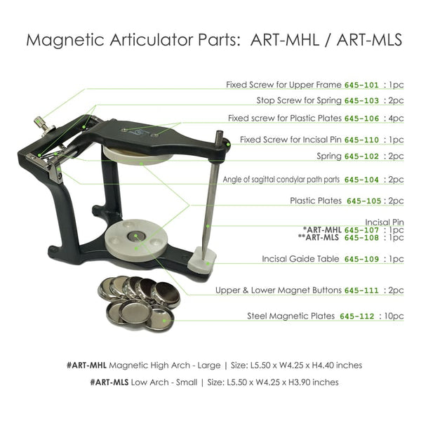 BesQual Low Arch Magnetic Articulator - Small with Incisal Pin and 10pcs Metal Magnetic Plates