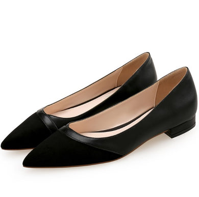 Small Size Pointy Toe Flat Heel Shoes SS315