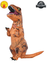 Boys Costume - T-Rex Inflatable With Sound