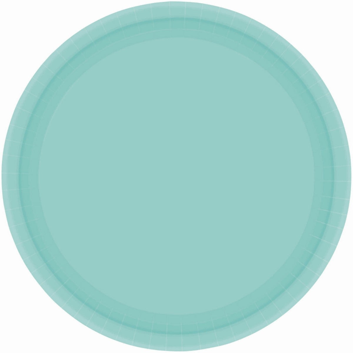 Robin Egg Blue Round Paper Plates 23cm 20pk - Party Savers