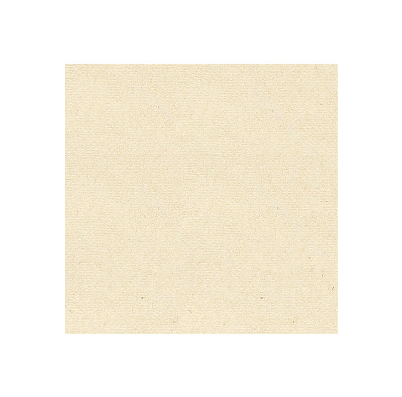 Eco-Brown Beverage Napkin 2 ply 250pk