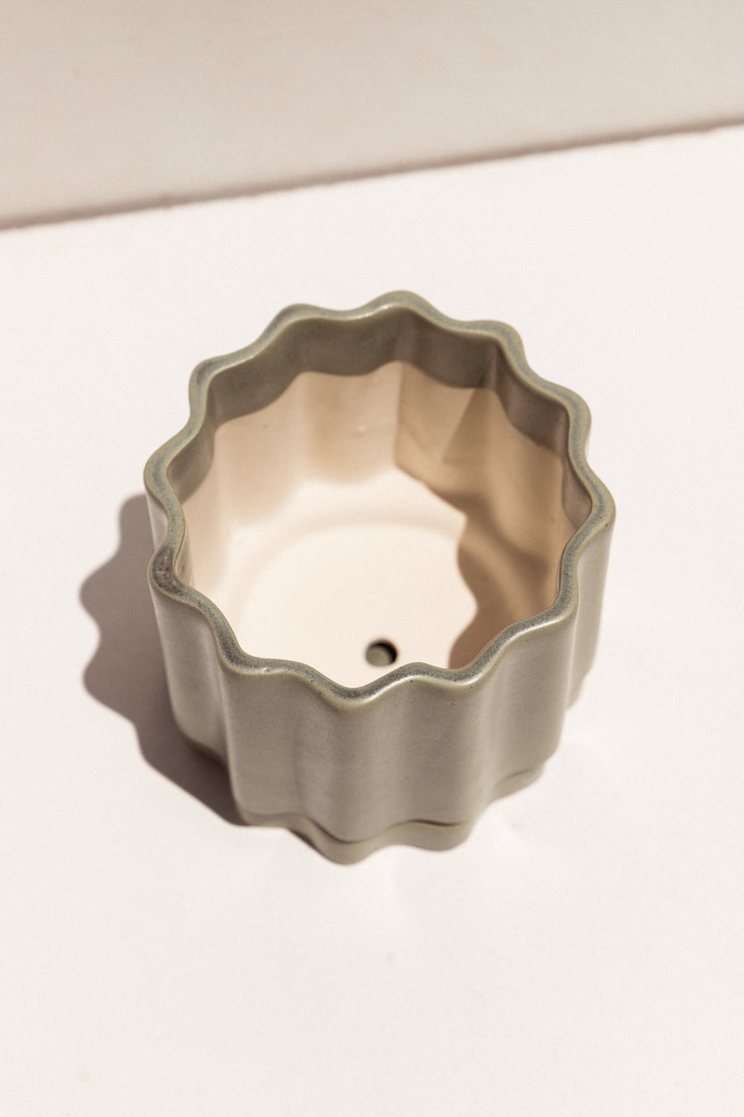Ella Reweti Ceramic planter in bubblegum colour on Makers' Mrkt