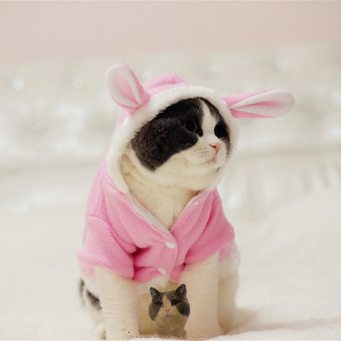 Trendy Bunny Sweater for Cats