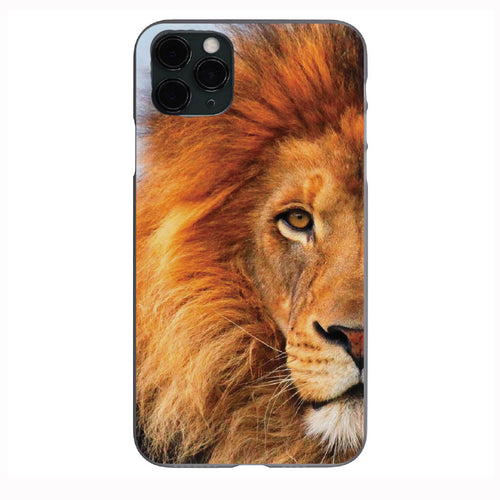 Focused Lion Apple Iphone Samsung Phone Shockproof Case Cover