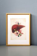 Liver Flower Anatomy - Framed Medical Art