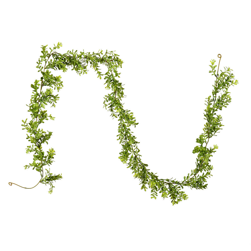 6' Artificial Green Boxwood Modern Garland