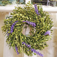 Dried Boxwood with Purple