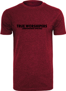 Men's TRUE WORSHIPER Round Neck T-Shirt (Red)