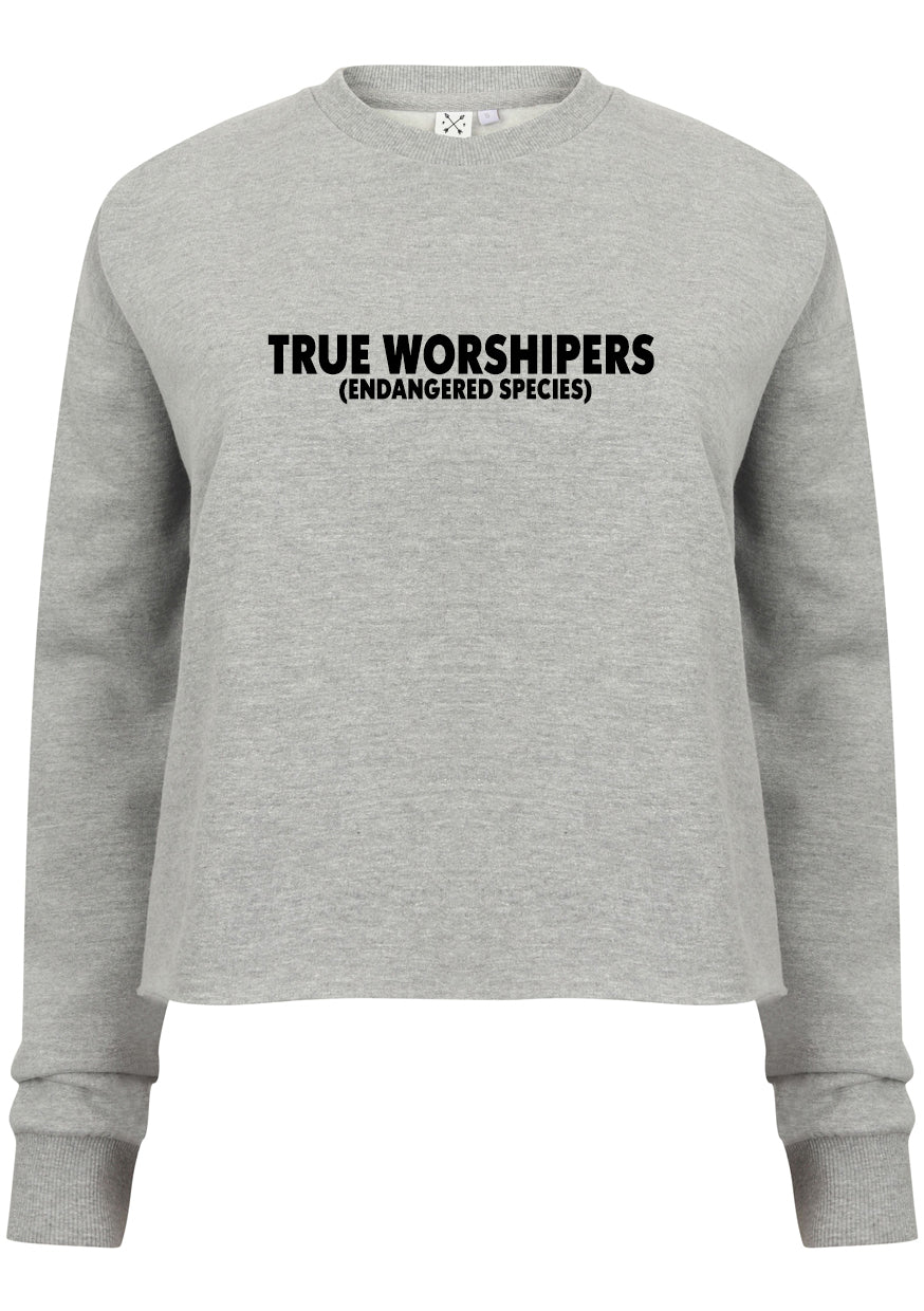 Womens TRUE WORSHIPERS Cropped Sweatshirt (Heather Grey)