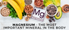 Magnesium - The Most Important Mineral In The Body