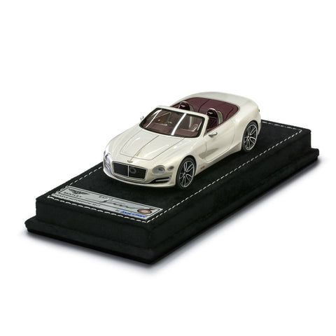 1:43 Speed 6e Concept Car