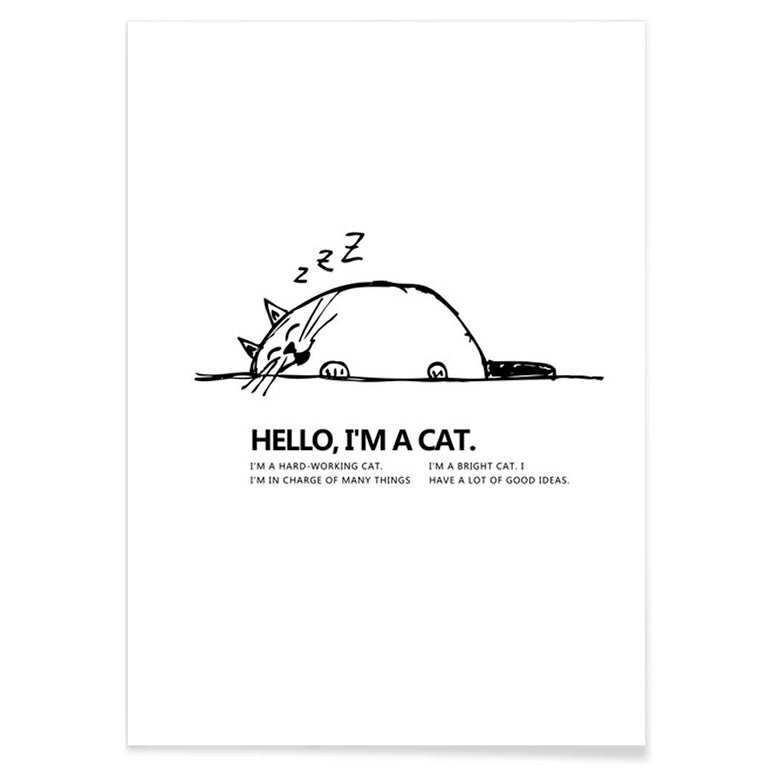 Minimalist Cartoon - Canvas Print - Conscientnetworks