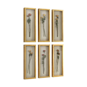 Rosalie shadow boxes, set of six