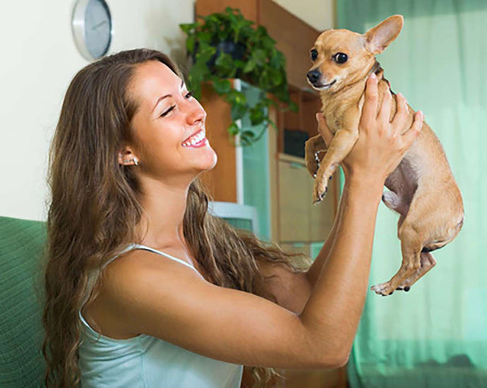 "Be a Pet Darling...with Our ""Sweet 16"" Tips for Responsible Pet Ownership"