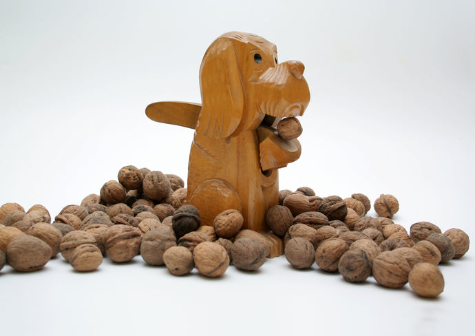 Nuts for Dogs - Toxic And Vet-Approved Varieties