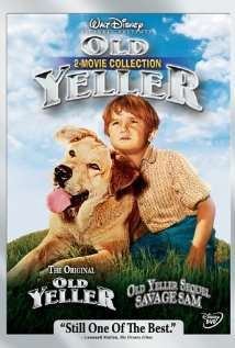 Great Dogs Movies to Watch
