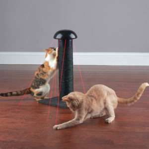 A Laser Chasing Scratching Post