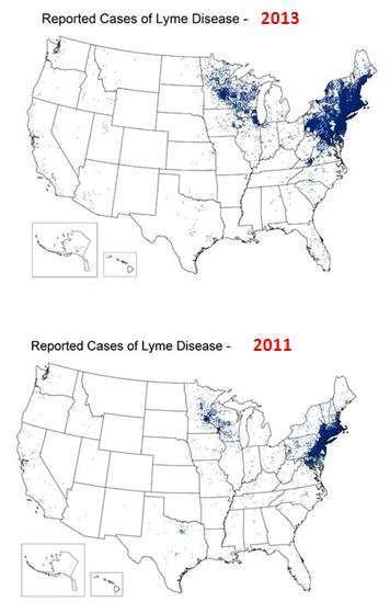 Instances of Lyme Disease as reported by the CDC (2001 vs. 2013)