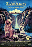 homeward bound the incredible adventure pawsome pet-friendly movies vet organics