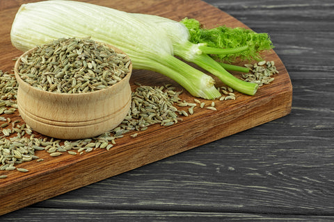 Anise Seed Is Basically Catnip For Dogs | Vet Organics