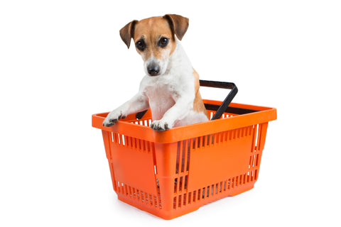 Dog-Friendly Retail Chains: Some May Surprise You | Vet Organics