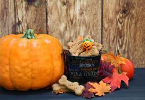 Pumpkins and Dog Nutrition