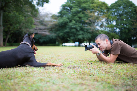 How To Take Perfect Insta-Worthy Pet Photos, Part One | Vet Organics