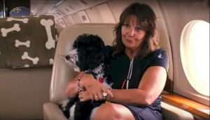 """RJ is no ordinary Shepherd Doodle. A dog is pampered by in-flight doggy service Sit 'n Stay Global A dog is pampered by in-flight doggy service Sit 'n Stay Global Sit 'n Stay Global View all 3 photos A dog (not RJ) gets special treatment from Sit 'n Stay Global during a flight. Sit 'n Stay Global While the less fortunate of his kind are usually sedated and tricked into doggy crates to fly from point A to B (a designer travel bag if they're lucky) – not only is RJ allowed to roam free during his owner's flights – as his owner also owns the plane – but he even has a special in-flight service hired specifically to tend to his every need. RJ's story is featured in the new HGTV special, """"Posh Pets: Lifestyles of the Rich and Furry,"""""""