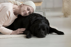 service-therapy-support-animals-Vet-organics-