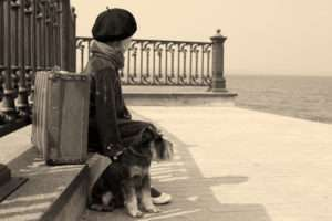 Pets have always accompanied their owners in travel...options are changing today.