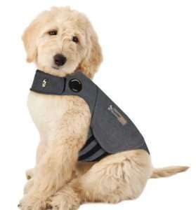 ... just safe, comfortable pressure. POSITIVE SOLUTION - Most dogs love to wear ThunderShirts! INEXPENSIVE - A fraction of the cost of medications, training... or de