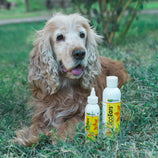 EcoEars Dog Ear Cleaner – Infection Formula, 4 or 8-oz bottle