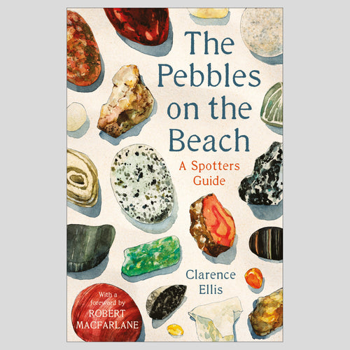 Bookspeed The Pebbles on the Beach: A Spotter's Guide 1