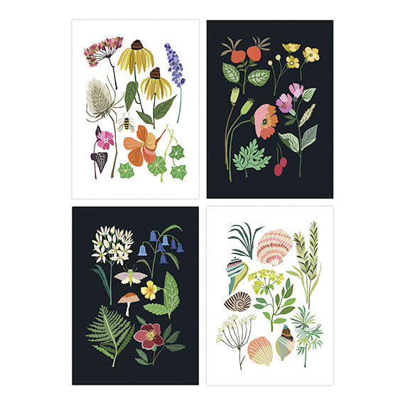 Brie Harrison Brie Harrison Nature Postcards Set of 4 2