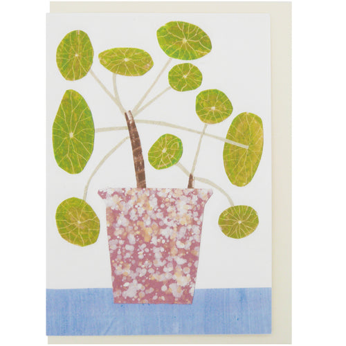 Hadley Paper Goods Hadley x Kettle's Yard Bobble Plant Greetings Card 1