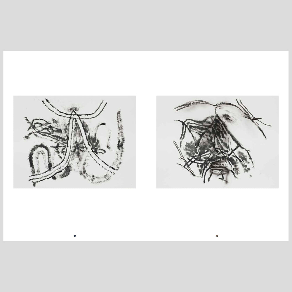 Kettles Yard Julie Mehretu Drawings and Monotypes  3