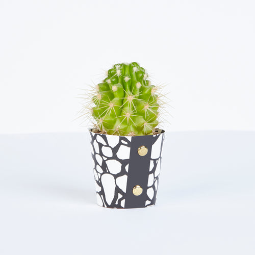 Wald Small Plant Pot Cover 2