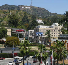 Hollywood Hills Street Scene